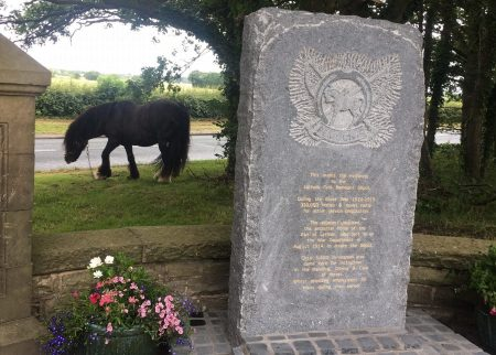 War Horse Memorial unveiled
