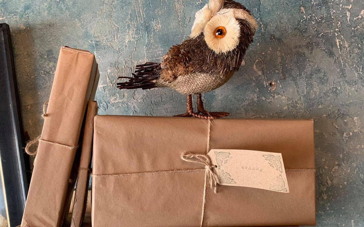 Mandrakes Owl